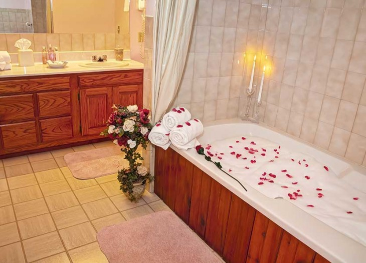 Bavarian Inn Lodge Standard King Single Person Jacuzzi
